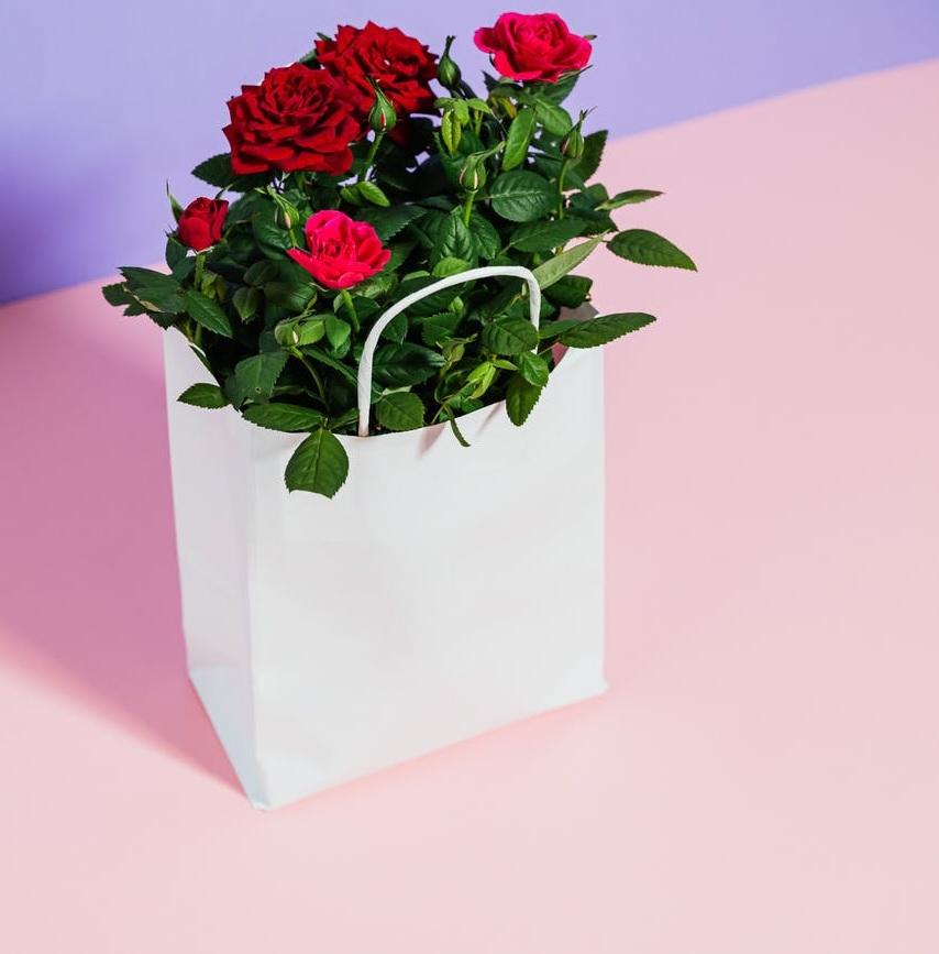 Keren! Ketahui Aneka Pilihan Souvenir Tas Cantik untuk Pernikahan