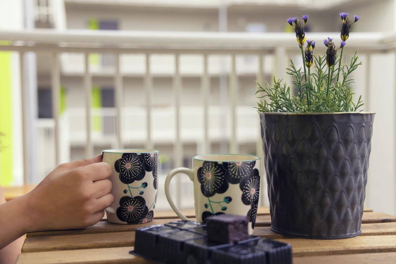 Opsi Desain Mug Mama Papa yang Bisa Dipesan Secara Custom